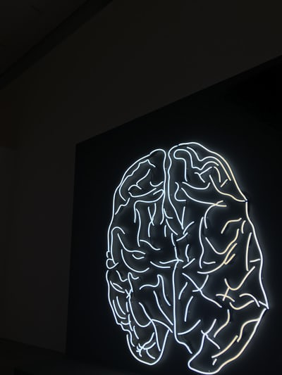 How Brainwaves Affect Musical Performance